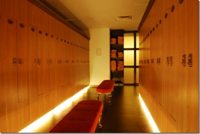 Locker and safety box (3)