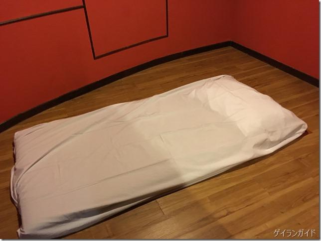 Summit SPA プレイルーム ベッド