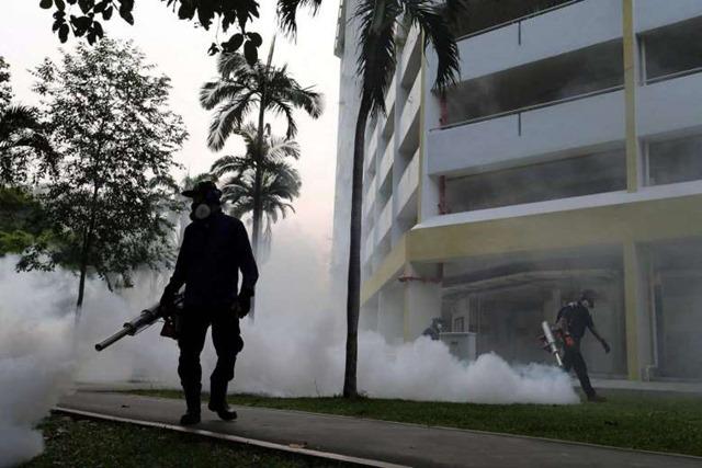 39665014_-_28_08_2016_-_singapore-health-zika-virus